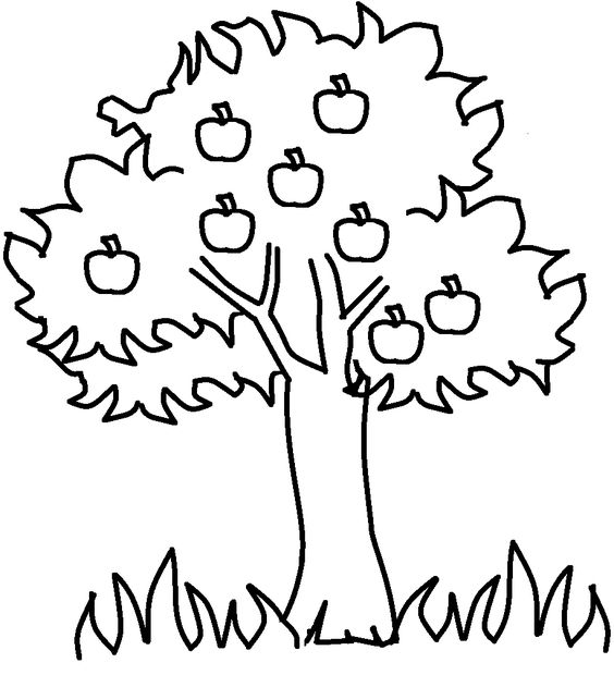 Tree Coloring Pages 27
