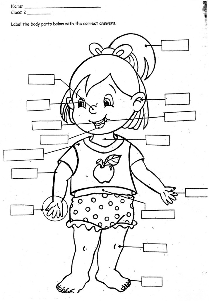 coloring pages for kids-parts of the body