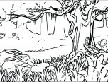 forest coloring pages download 152x116