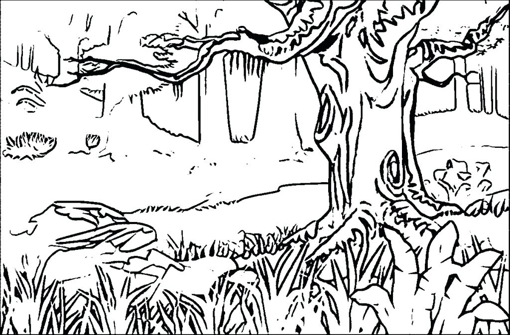 forest coloring pages download
