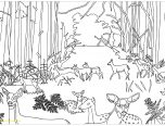 forest coloring pages with Forest Coloring Page Hard Animals Pages And art mission