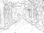 forest coloring pages for toddlers 152x116