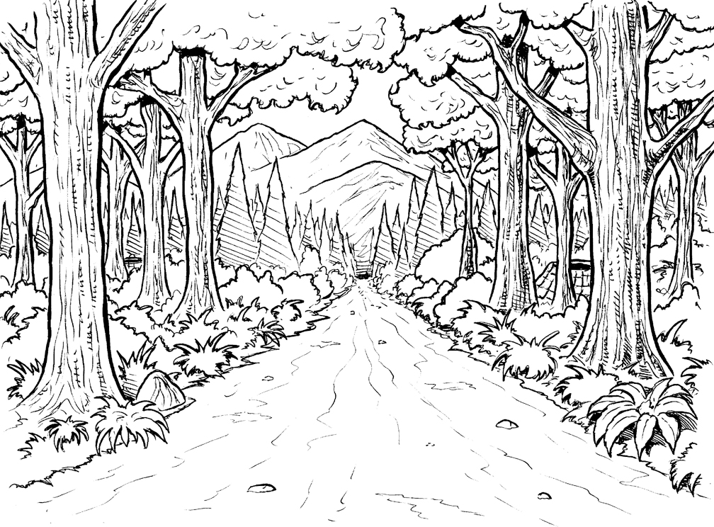 forest coloring pages trees