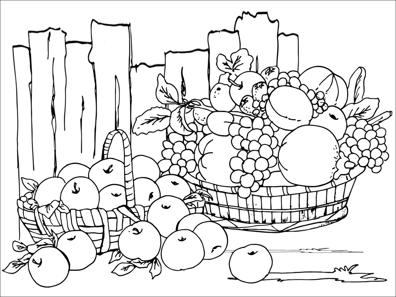 october coloring pages, free fall coloring pages, fall tree coloring pages, fall coloring pages pdf, fall coloring pages for first grade, fall coloring pages for adults