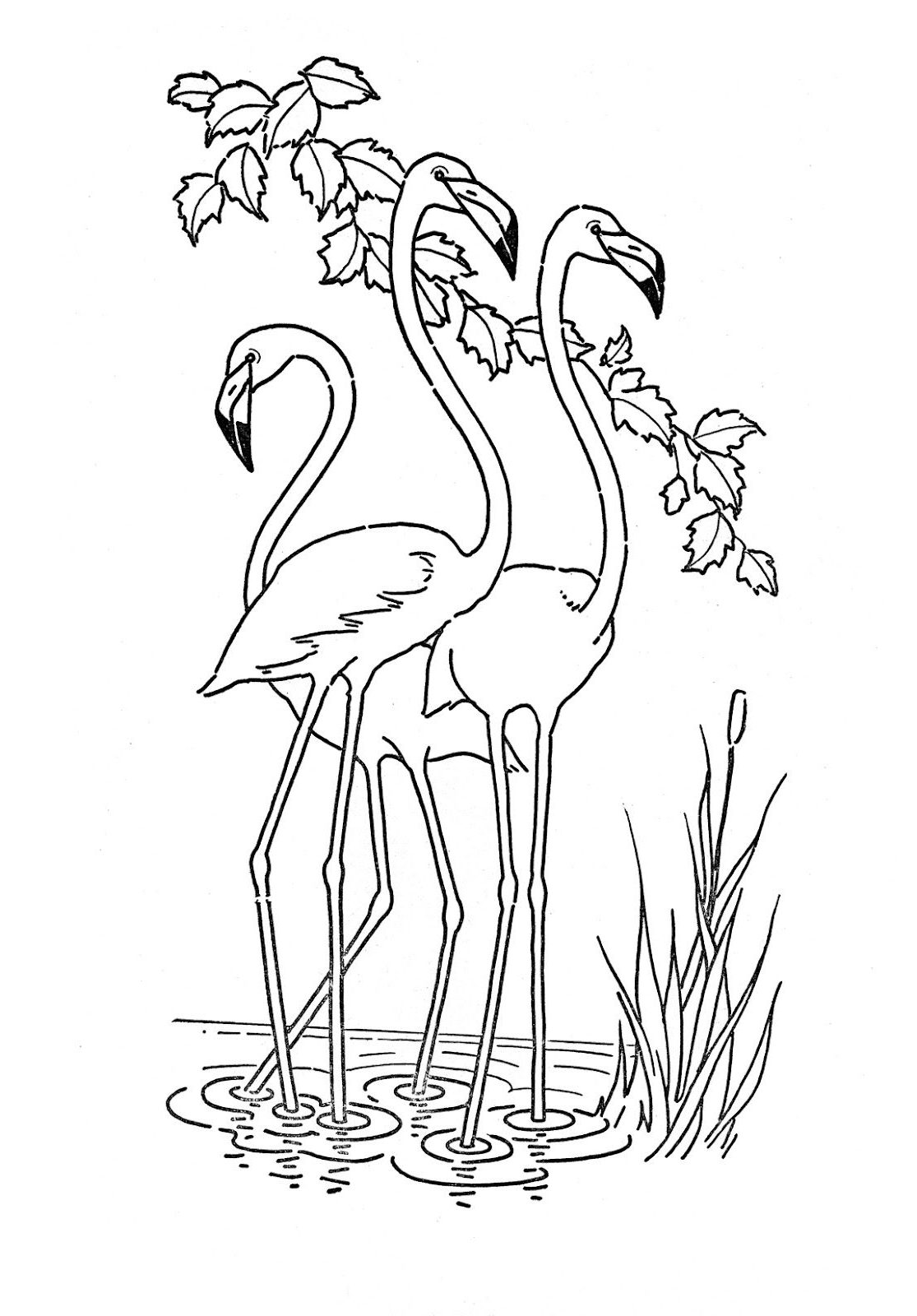 Animal Coloring Pages | Free coloring pages printable for ...