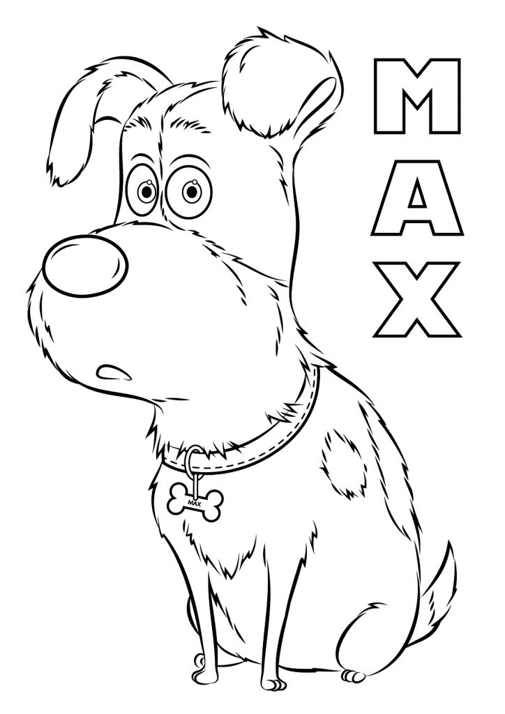 printable The Secret Life of Pets Coloring Pages - Best Coloring Pages... simple