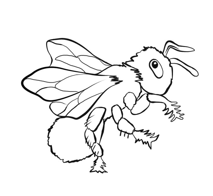 for sunday school Free Printable Bug Coloring Pages For Kids pdf