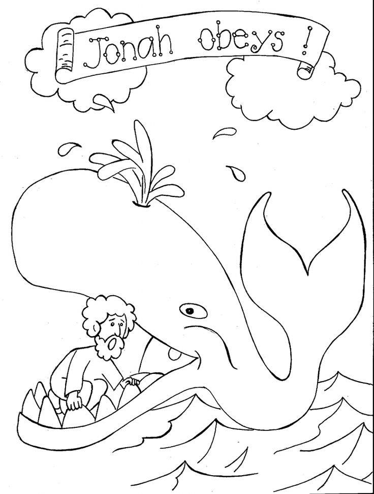 for kindergarten Free Printable Whale Coloring Pages For Kids for teens