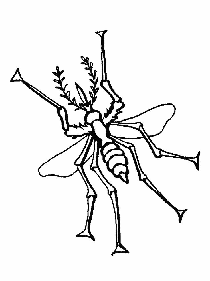 to print out Free Printable Bug Coloring Pages For Kids for teens