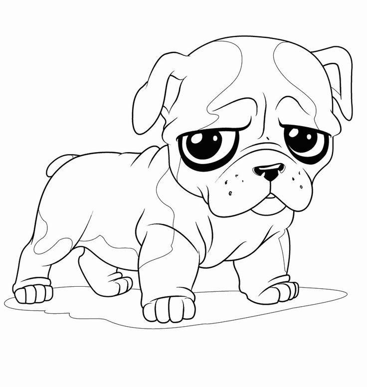 coloring pages for kids only | toddler Bulldog Coloring Pages - Best Coloring Pages For ...