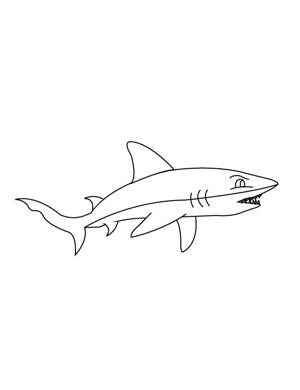 for boys Free Printable Shark Coloring Pages For Kids for sunday school