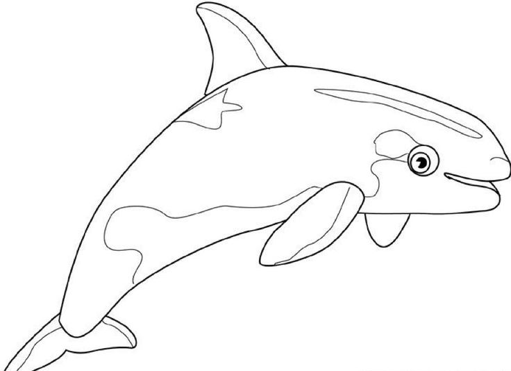 for kindergarten Free Printable Whale Coloring Pages For Kids free