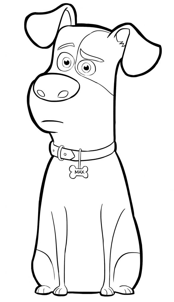 for girls The Secret Life of Pets Coloring Pages - Best Coloring Pages... easy