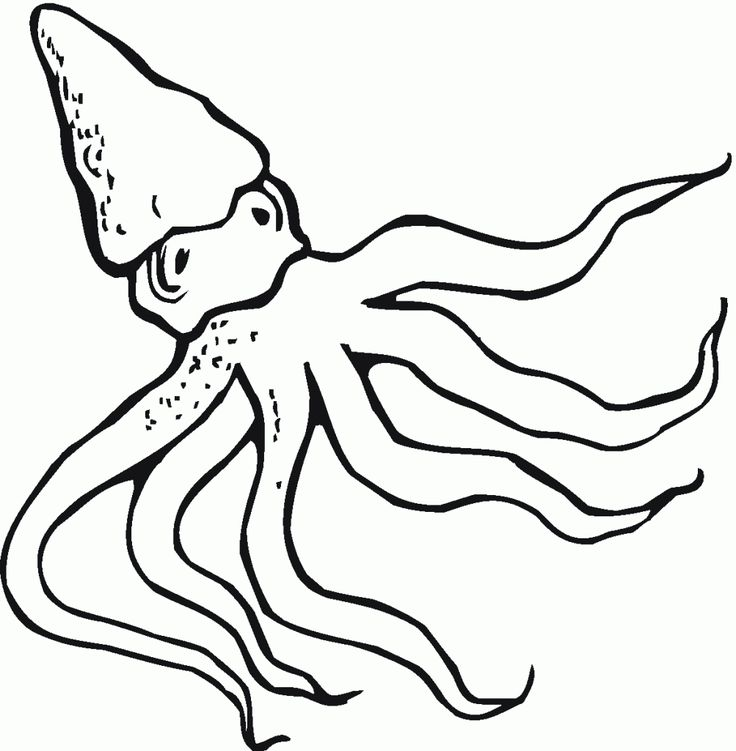 already colored Free Printable Octopus Coloring Pages For Kids printable