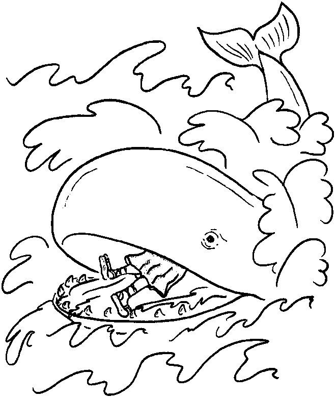 for kindergarten Free Printable Whale Coloring Pages For Kids pdf