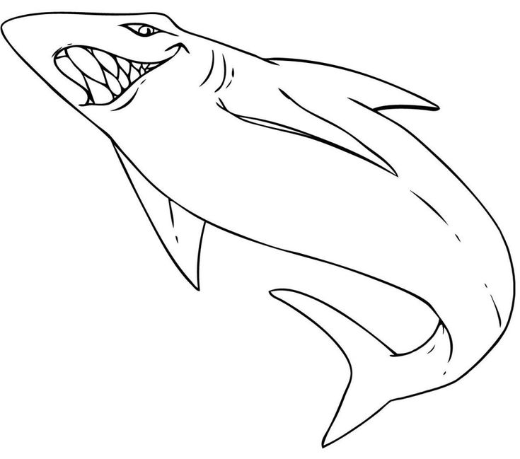 for sunday school Free Printable Shark Coloring Pages For Kids simple