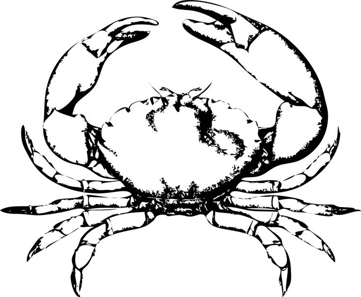 toddler Free Printable Crab Coloring Pages For Kids for adults