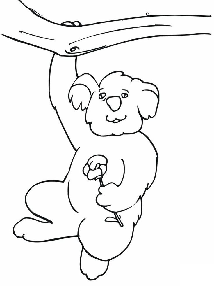 for girls Free Printable Koala Coloring Pages For Kids to print out