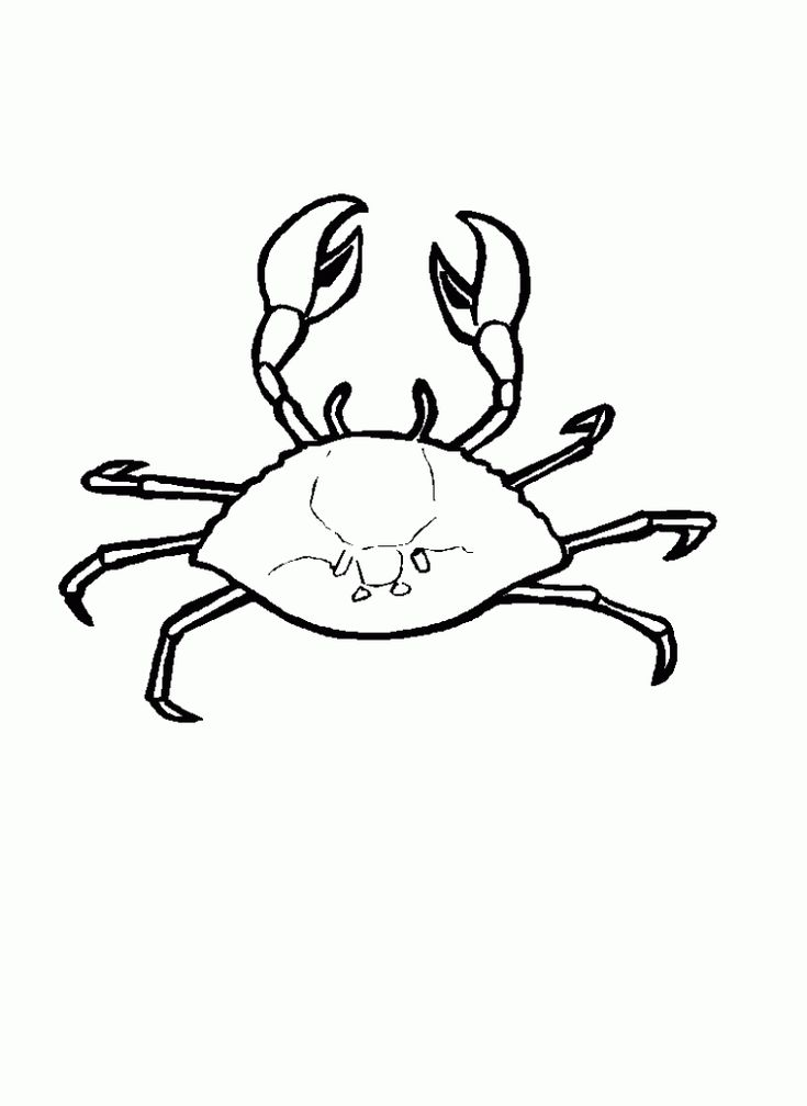 toddler Free Printable Crab Coloring Pages For Kids pdf