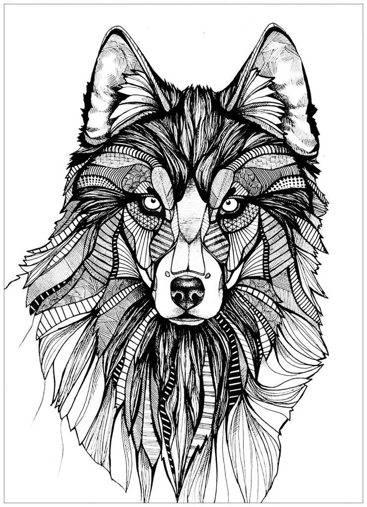 Free Wolf Coloring Pages For Adults Best Coloring Pages