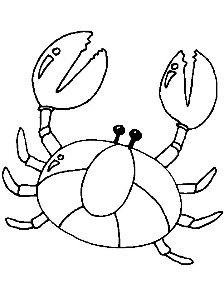 toddler Free Printable Crab Coloring Pages For Kids already colored