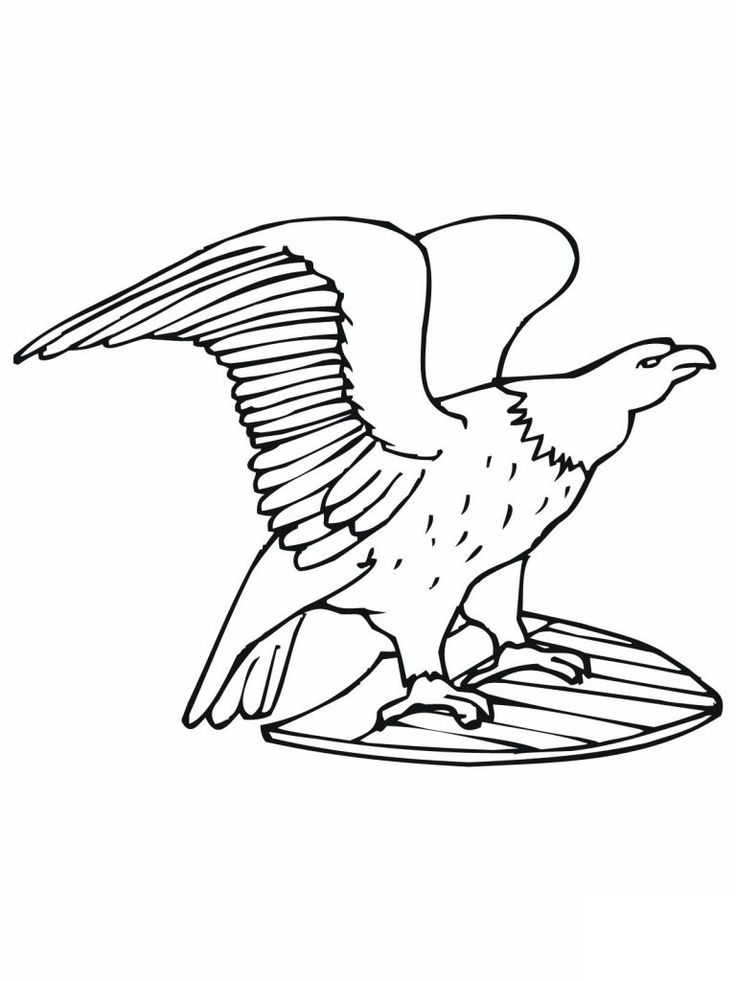 simple Free Printable Bald Eagle Coloring Pages For Kids for toddlers
