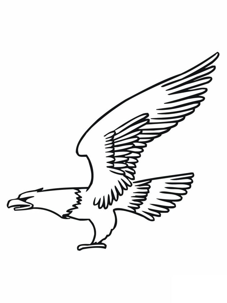 free Free Printable Bald Eagle Coloring Pages For Kids free