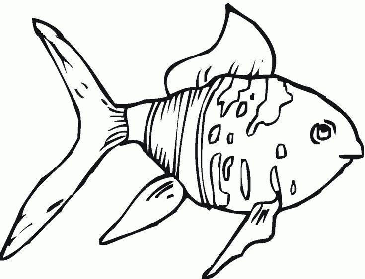 for teens Free Printable Goldfish Coloring Pages For Kids ...