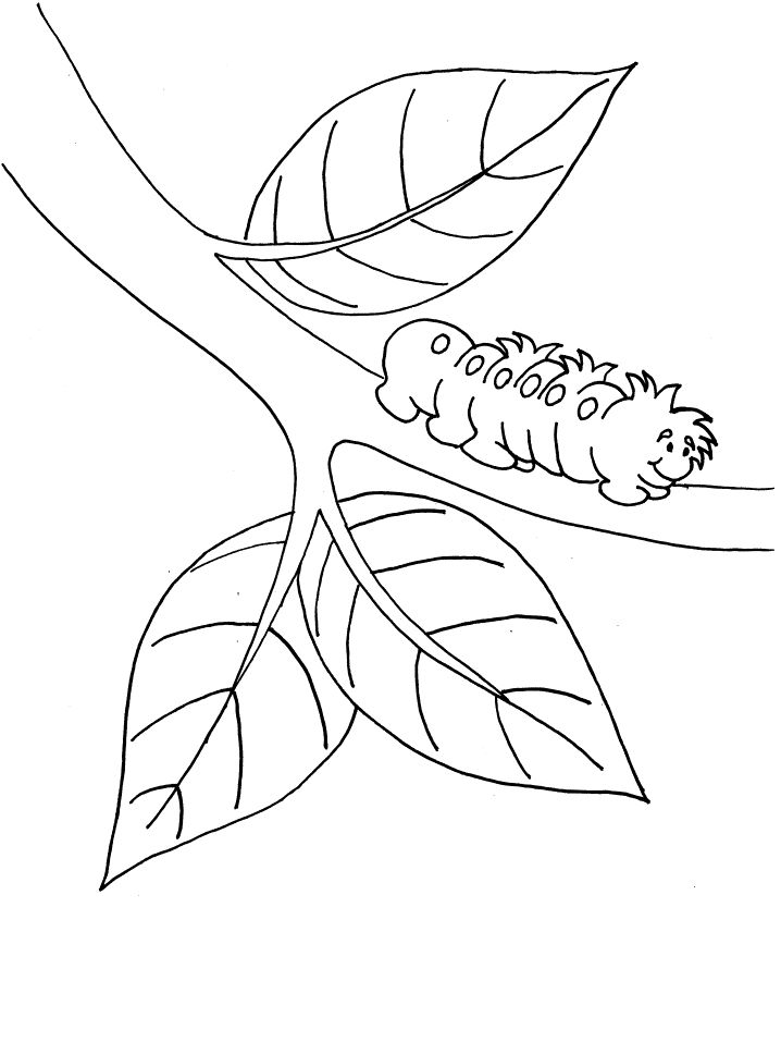 printable Free Printable Caterpillar Coloring Pages For Kids printable