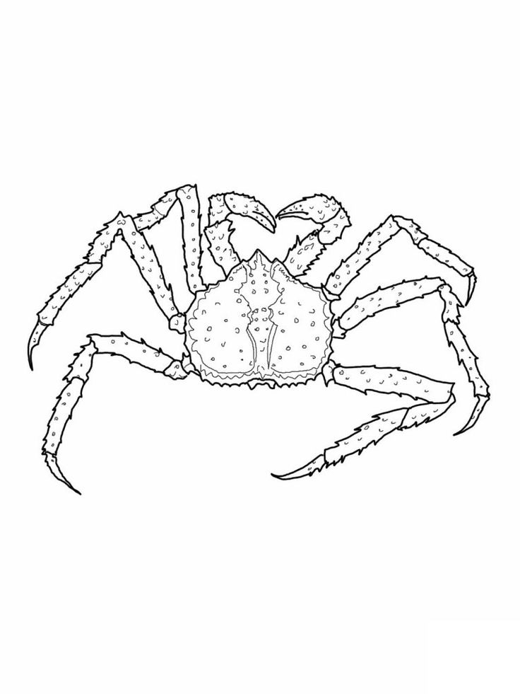 free printable Free Printable Crab Coloring Pages For Kids for boys