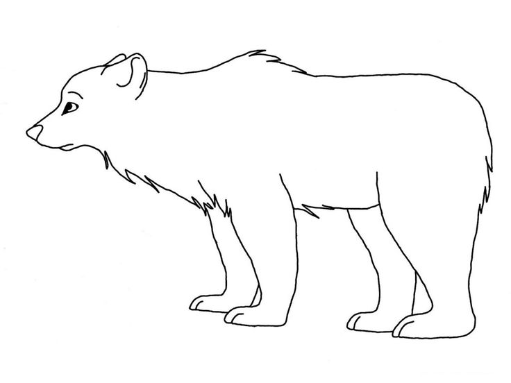 for boys Free Printable Polar Bear Coloring Pages For Kids for kids