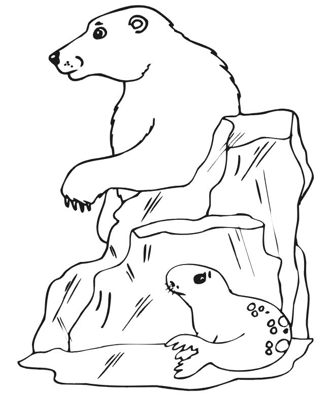 graphic regarding Printable Polar Bear Pictures referred to as on the net No cost Printable Polar Undergo Coloring Webpages For Small children for