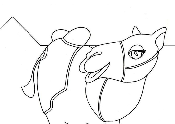 preschool Free Printable Camel Coloring Pages For Kids for teens