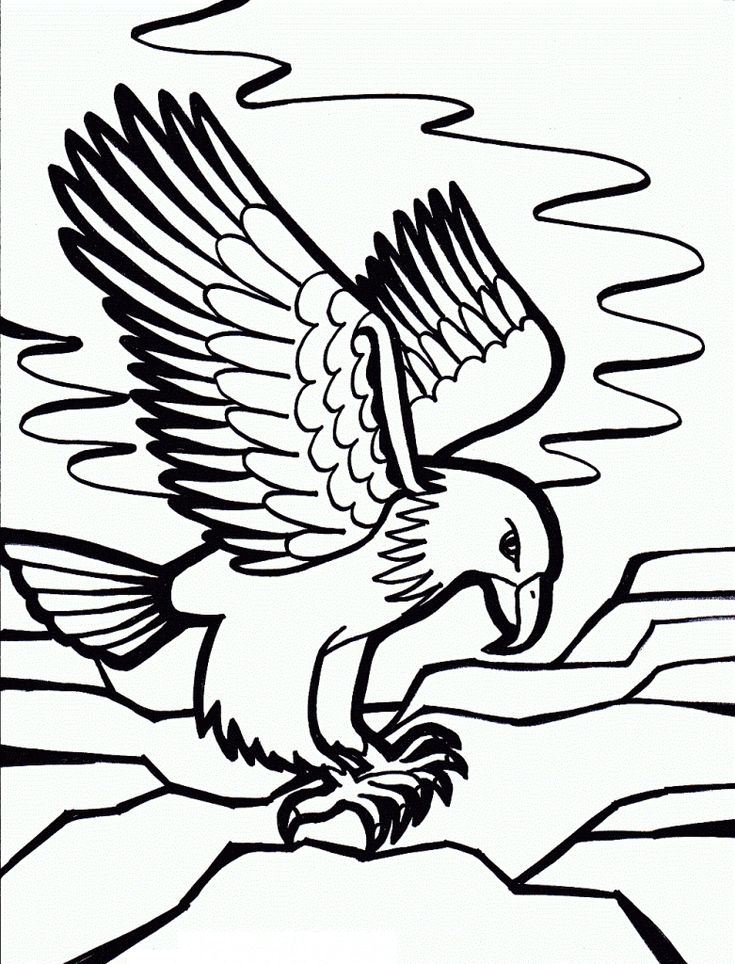 for kids Free Printable Bald Eagle Coloring Pages For Kids toddler