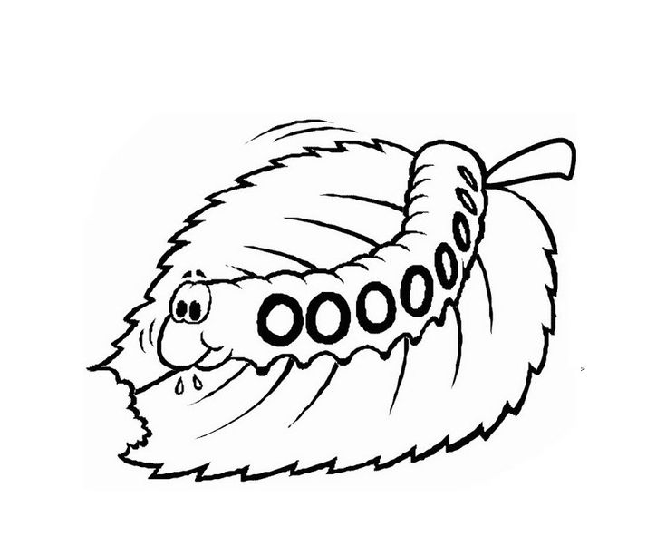 to print out Free Printable Caterpillar Coloring Pages For Kids online