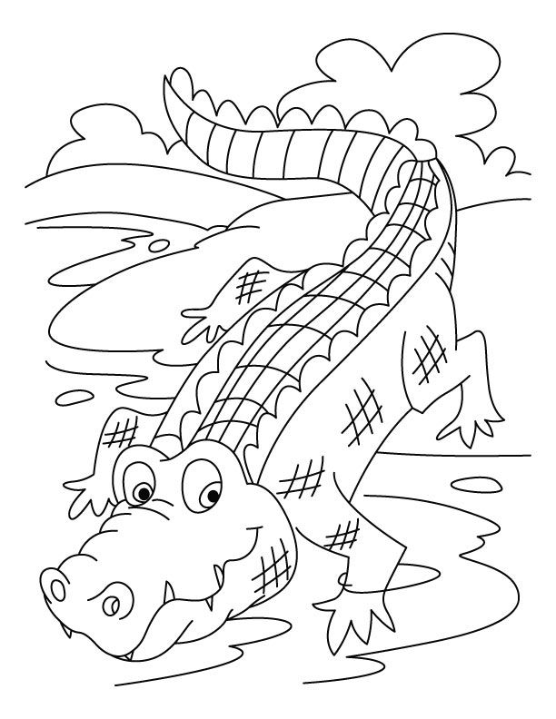 free Free Printable Crocodile Coloring Pages For Kids toddler