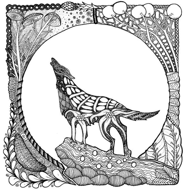 preschool Wolf Coloring Pages for