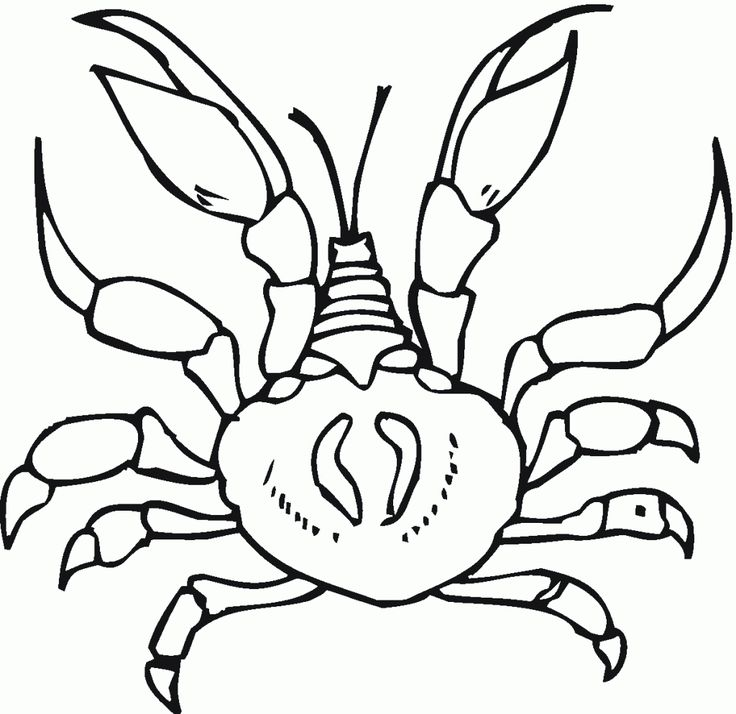 already colored Free Printable Crab Coloring Pages For Kids printable