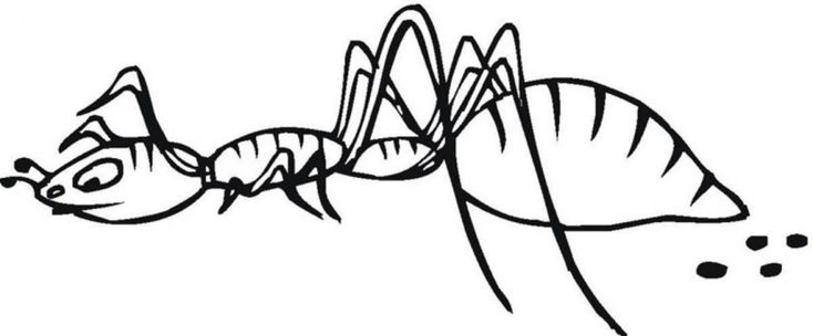 for kindergarten Free Printable Ant Coloring Pages For Kids for adults