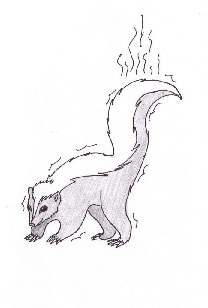 online Free Printable Skunk Coloring Pages For Kids already colored