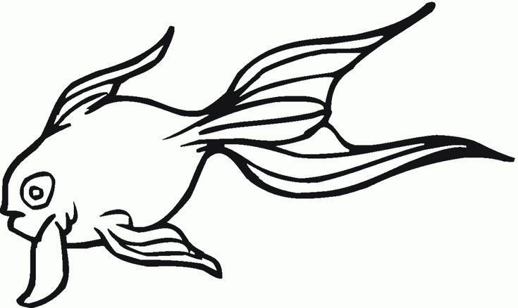 free Free Printable Goldfish Coloring Pages For Kids free printable
