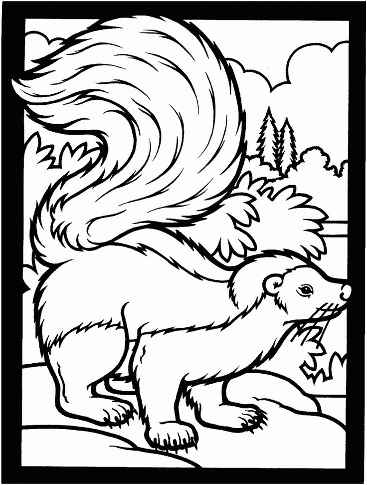 online Free Printable Skunk Coloring Pages For Kids pdf