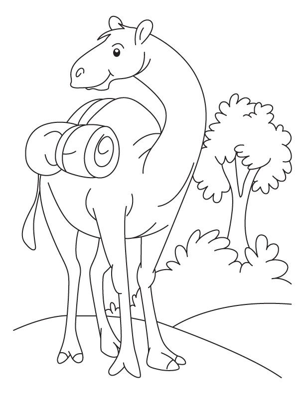 for adults Free Printable Camel Coloring Pages For Kids free printable