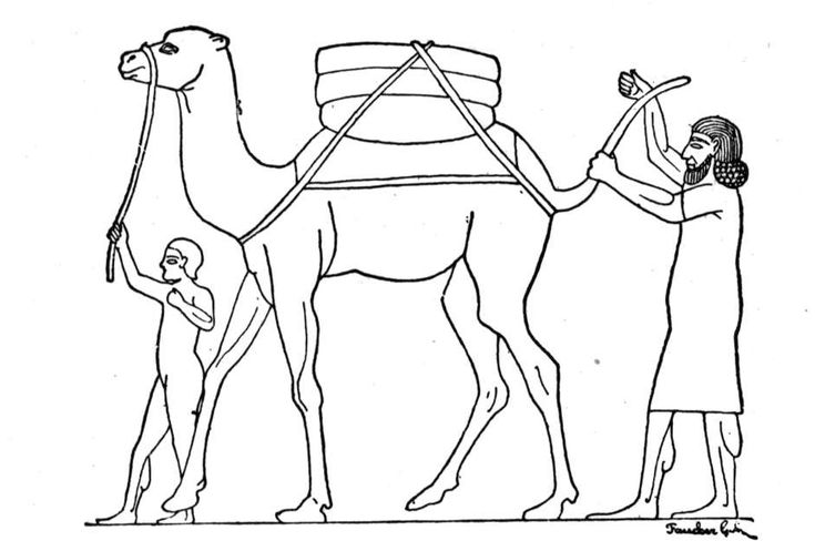 for sunday school Free Printable Camel Coloring Pages For Kids toddler