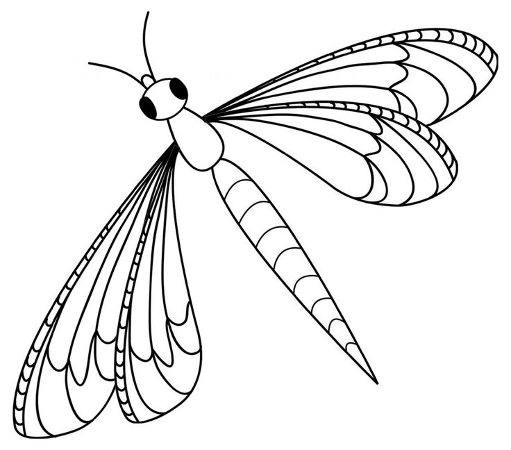 for sunday school Free Printable Dragonfly Coloring Pages For Kids for toddlers
