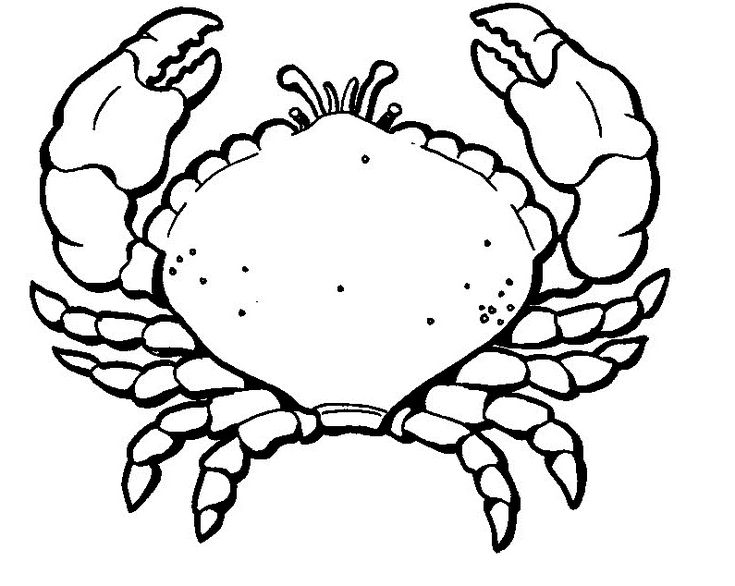 free Free Printable Crab Coloring Pages For Kids easy