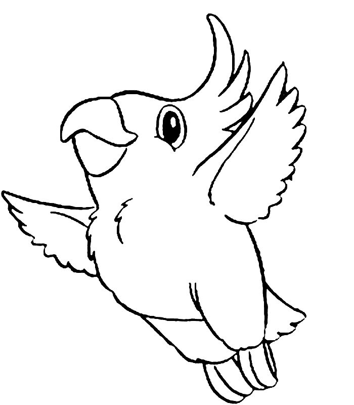 already colored Free Printable Parrot Coloring Pages For Kids pdf