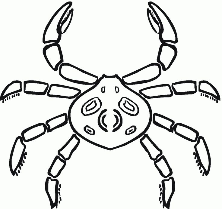 for kindergarten Free Printable Crab Coloring Pages For Kids for teens