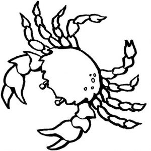 toddler Free Printable Crab Coloring Pages For Kids preschool