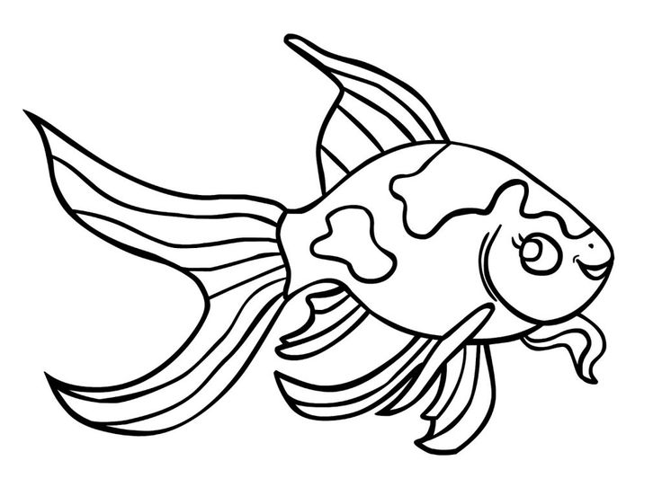 for girls Free Printable Goldfish Coloring Pages For Kids free